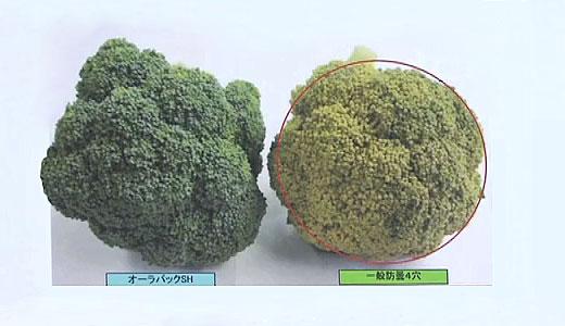 folie prospetime fructe legume