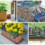 Automat pentru udarea plantelor