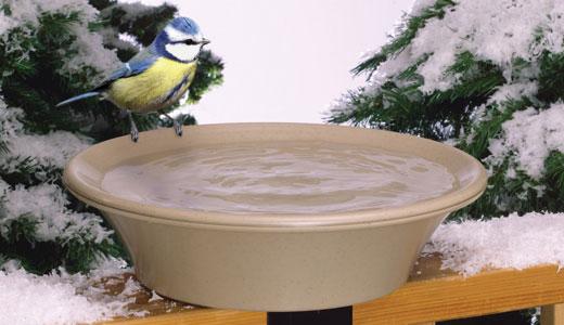 Vas apă încălzită pentru păsări iarna